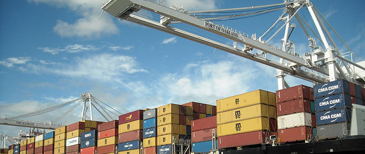 import export trade insurance service
